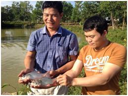 Lâm Đồng: Kết quả mô hình nuôi cá hô thương phẩm trong ao đất