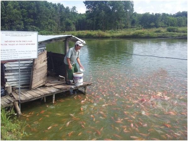 Đà Nẵng: Thay đổi nhận thức, hướng đến nuôi thủy sản an toàn sinh học