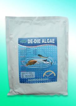 De die Algae