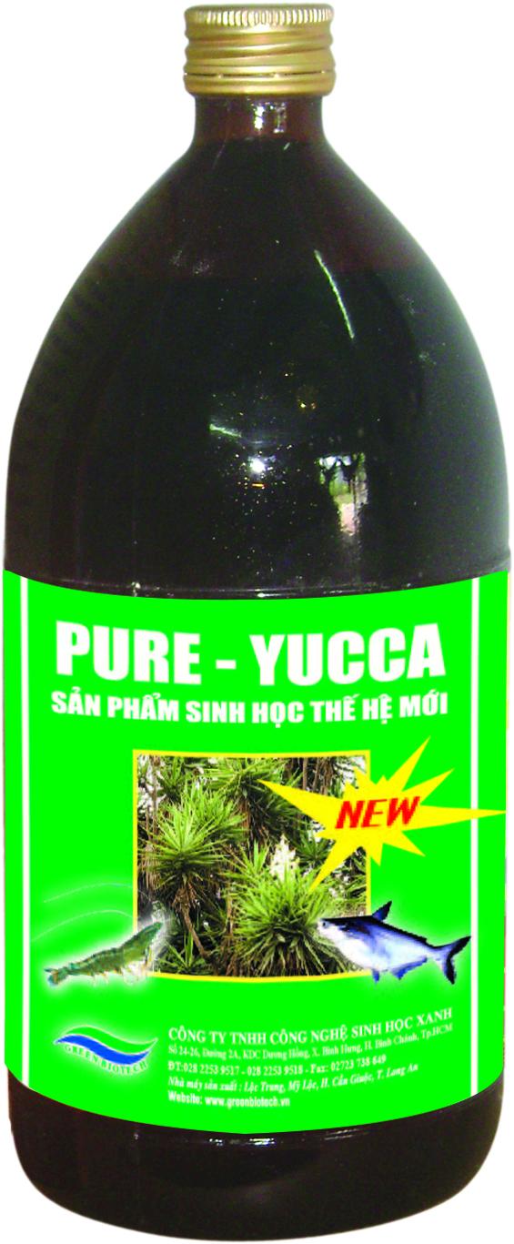 Pure Yucca ( NEW )